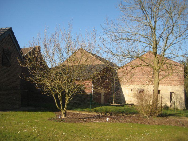 Grundstück mit mannigfaltigen Möglichkeiten – Ehemaliger Bauernhof – in Niederkrüchten-Brempt, 41372 Niederkrüchten, Grundstück